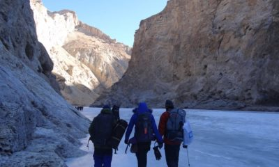 Significant Hints That Set you up For CHADAR TREK.